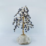 Sodalite 160 Gem Chip Tree on Calcite Apophyllite Cluster Base